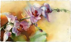 Flower watercolor painting  original painting  by OlgaSternyk