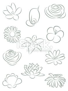 How to draw flowers.Set of flowers. Vector illustration. Royalty Free Stock Vector Art Illustration