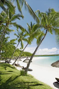 #kuoni #mauritius #beach #palmes #beachfront #wellbeing