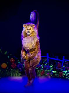 """Lee MacDougall (as Lion) in Andrew Lloyd Webber's new production of """"The Wizard of Oz. Wizard Of Oz Musical, Come From Away, Cowardly Lion, Theatre Reviews, Set Design, In Hollywood, Costumes, Broadway, Xmas"""