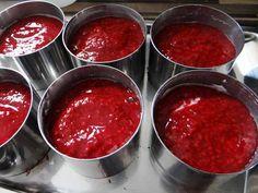 Low Carb Himbeer-Joghurt Törtchen | Low Carb Rezepte
