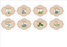 etichette/ labels  per erbe aromatiche