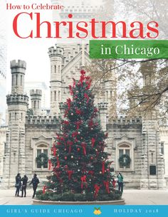 Celebrate Christmastime in Chicago, 2018 with the best activities, things to do, and more. Make amazing memories with your family this Christmas in Chicago. Chicago Christmas, Christmas Town, Christmas Travel, Christmas Ideas, Chicago Tours, Visit Chicago, Chicago Travel, Farmhouse Chicago, Chicago Girls