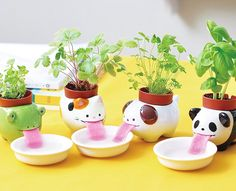 Cultivate cuteness inside your home. - http://noveltystreet.com/item/17312/