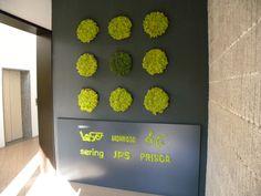 Sering  www.themossdesign.com  www.verdeprofilo.com  #green #MOSS #MOSSdesign #MOSStile #design #WallProjects