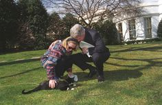 He was able to bring Bill and Hillary together.   15 Reasons Why Socks Was The Best Cat Of All Time