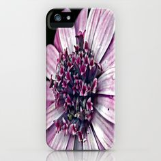 Macro African Daisy iPhone & iPod Case by Catherine1970 - $35.00