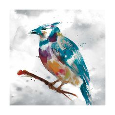 The giclee-printed blue jay depicted on the Tangletown Fine Art Blue Jay Canvas Wall Art by Stephanie Fontaine is composed in a bright wash of colors. Painting Edges, Painting Prints, Art Prints, Canadian Art, Blue Jay, Stretched Canvas Prints, 5 D, Wrapped Canvas, Canvas Wall Art