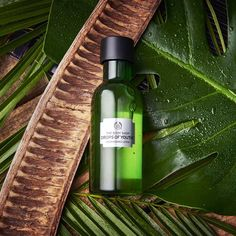 We haven't found the fountain of youth, but we might have found a few drops of it… Our Drops Of Youth™ Essence Lotion, infused with three resilient plant stem cells from Edelweiss, Sea Holly and Criste Marine, will help make your skin feel smoother and softer. #DropsOfYouth #TheBodyShop #Beauty #SkinCare