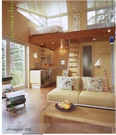 """A little more spacious """"tiny"""" house."""