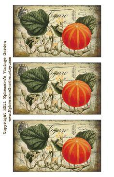Ephemera's Vintage Garden: Weekly Freebie: Autumn Harvest Hang Tags