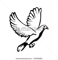 Vector pigeon symbol. Creative graphic logo design elements. Isolated on white background.