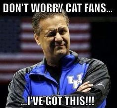 Don't worry cat fans. I got this!