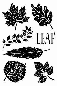 ...leaves