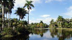Fairchild Tropical Botanical Garden, Miami