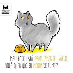 Livro ilustrado mostra como é a vida a partir da visão dos gatos   Catraca Livre