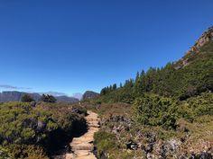 The Tasmanian Overland (Cradle Mountain) Track: A Hiking Guide - Sarah Wilson Hiking Guide, Day Hike, Tasmania, Track, Mountain, Holidays, Big, Business, Holidays Events