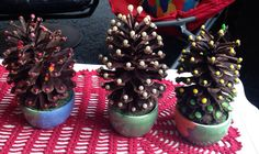 cones from the forest decorated for Christmas