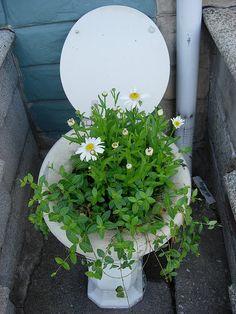 Baltimore Bathroom Garden