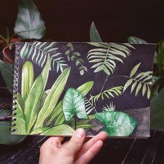 Jungle Illustration, Botany, Insta Art, Biology, Artsy, Illustrations, Illustration, Ap Biology, Illustrators