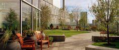 MGH Healing Garden