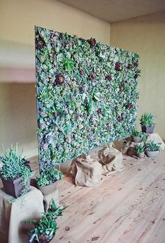 Succulent Floral Wall Wedding. Floral walls are so Kimye. Swap yours for a wall of growing succulents like this one, created by a DIY-loving bride.