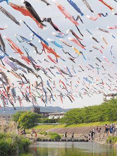 Children's Day... #Japan