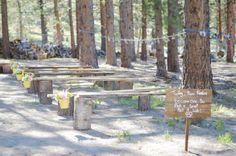 This DIY wedding featured bench seating handmade by the bride and groom | Ashley and  Dustin's Rustic Backyard Wedding at Mount Charleston by JOA Photography | Little Vegas Wedding