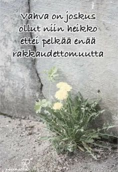 Näin on. Relax, Smile, Quotes, Quotation, Quotations, Smiling Faces, Qoutes, Manager Quotes