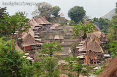 A classic Ngada hill village near Bena in Flores