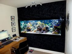 Home Office With Track Lighting And Saltwater Aquarium