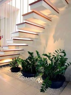 Sublime 12 Elegant Home Stair Design With Ornamental Plants Ideas There are many ways to decorate your stairs, and the inclusion of botanical trends is the best alternative you can take. Nowadays, ornamental plants w. Home Stairs Design, House Design, Stair Design, Plant Design, Garden Design, Space Under Stairs, Inside Garden, Office Plants, Garden Office