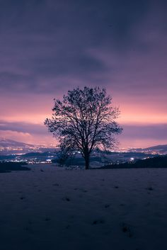 Nightly Glow / Nikon D600 (by [ g-No