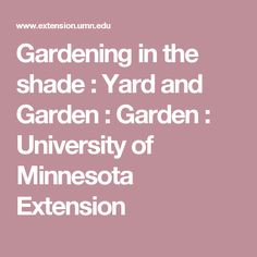 Gardening in the shade : Yard and Garden : Garden : University of Minnesota Extension