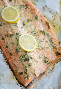 This baked steelhead trout recipe is an easy dinner option and a great alternative to salmon! Loaded with fresh Parmesan cheese, fresh parsley, lemon and garlic, it is sure to become one of your favorite baked fish recipes! Steelhead Trout Recipe Baked, Baked Trout, Baked Fish, Baked Salmon Recipes, Fish Recipes, Seafood Recipes, Cooking Recipes, Grilled Trout Recipes, Fish Dishes