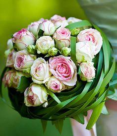 Blumen Link Fulda Floristik