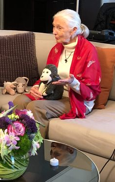 Fear Free Talks to Dr. Jane Goodall Fear Free Talks to Dr. Living In China, Jane Goodall, We Are All Human, People Leave, Dog Safety, Chimpanzee, African Countries, Plush Animals, Save The Planet