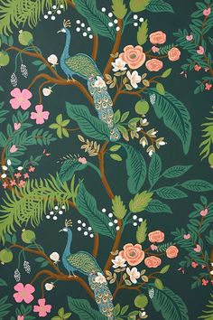 Rifle Paper Co. Peacock Wallpaper | Anthropologie Wallpaper Color, Floral Wallpaper Iphone, Peacock Wallpaper, Wallpaper Backgrounds, Green Floral Wallpaper, Print Wallpaper, Liberty Wallpaper, Cute Backgrounds For Phones, Colors