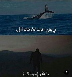 Arabic Funny, Funny Arabic Quotes, Cover Photo Quotes, Picture Quotes, Senior Jackets, Really Good Quotes, Beau Message, Funny Study Quotes, Funny Picture Jokes