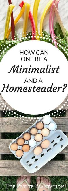 How can a homesteader be a minimalist?