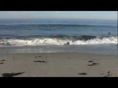 Music/Sound 1: I love the sound of the waves everyone will head in the beginning…