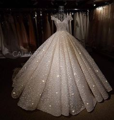 Classic Wedding Dresses Lace,Ball Gown Wedding Dress With Train, Strapless Wedding Gown Plus Pretty Quinceanera Dresses, Cute Prom Dresses, Pretty Dresses, Bridal Dresses, Long Ball Dresses, Quinceanera Party, Disney Dresses, 15 Dresses, Princess Wedding Dresses