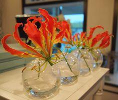 Glorious. #gloriosalily #gloriosa #floraldesign #floristry #florist #flowers #happyflowers #beauty #dvflora #modernflowers by petalsfloraldesign