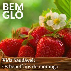 O inverno chegou e junto com ele a temporada dos morangos. Vem com a gente e saiba quais são os benefícios dessa fruta deliciosa, vem! #bemglo #vidasaudavel #morangos
