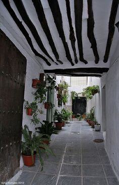 Alpujarra - Granada  Spain