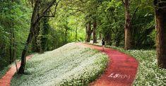 İstanbul'dan büyüleyici bir park projesi geliyor - Ontrava