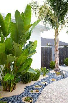 8 Astute Hacks: Zen Backyard Garden She Sheds beautiful backyard garden kids.Backyard Garden Landscape Articles modern backyard garden back yard. Palm Trees Landscaping, Backyard Trees, Florida Landscaping, Tropical Landscaping, Landscaping With Rocks, Front Yard Landscaping, Backyard Patio, Landscaping Ideas, Patio Ideas
