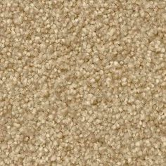 BEACON HILL, ALMOND SHELL Texture Active Family™ Carpet - STAINMASTER®