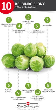 Sprouts, Education, Vegetables, Health, Therapy, Health Care, Vegetable Recipes, Onderwijs, Learning