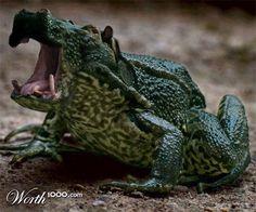 These Hybrid Animal Ideas Are Legitimately Awesome -  #animals #hybrid #mashup #worth1000